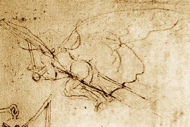 Орнитопер